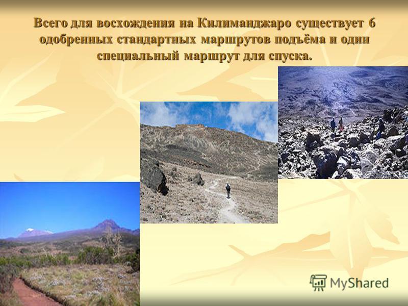 Всего для восхождения на Килиманджаро существует 6 одобренных стандартных маршрутов подъёма и один специальный маршрут для спуска.