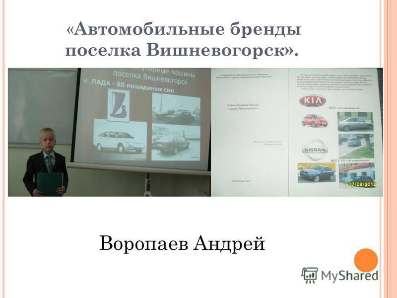 « Автомобильные бренды поселка Вишневогорск». Воропаев Андрей