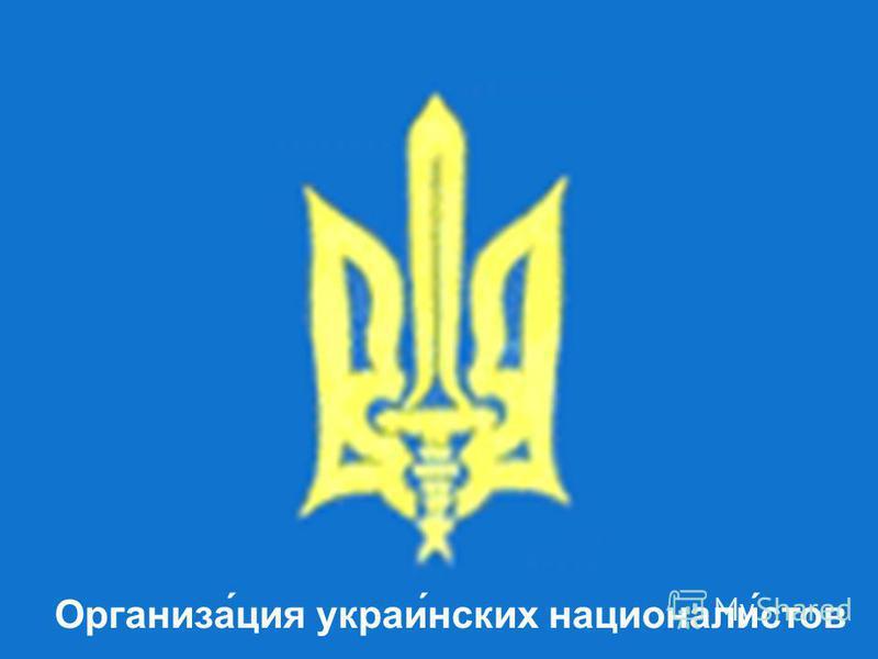 Организа́ция украли́нских национали́стов
