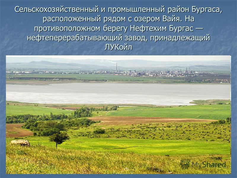 Сельскохозяйственный и промышленный район Бургаса, расположенный рядом с озером Вайя. На противоположном берегу Нефтехим Бургас нефтеперерабатывающий завод, принадлежащий ЛУКойл