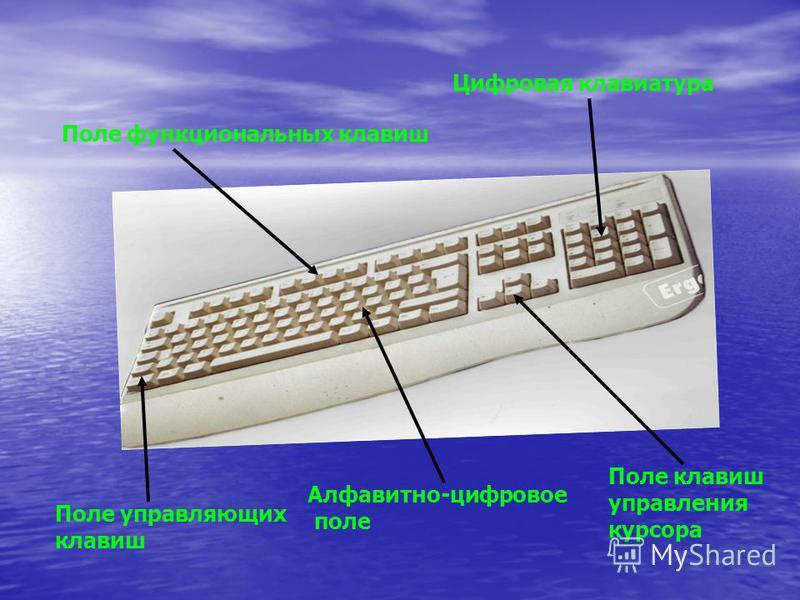 Поле управляющих клавиш Алфавитно-цифровое поле Поле клавиш управления курсора Поле функциональных клавиш Цифровая клавиатура