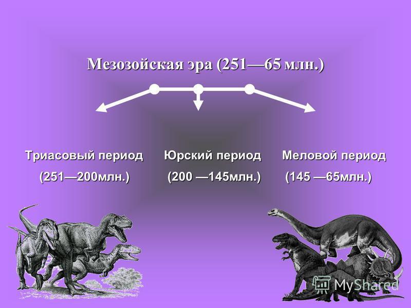 Мезозойская эра (25165 млн.) Триасовый период Юрский период Меловой период (251200 млн.) (200 145 млн.) (145 65 млн.)