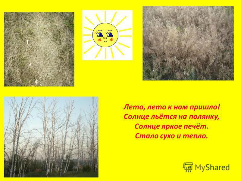 Лето, лето к нам пришло! Солнце льётся на полянку, Солнце яркое печёт. Стало сухо и тепло.