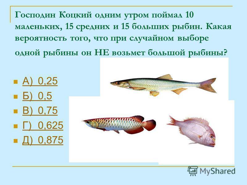 Господин Коцкий одним утром поймал 10 маленьких, 15 средних и 15 больших рыбин. Какая вероятность того, что при случайном выборе одной рыбины он НЕ возьмет большой рыбины? А)0,25 А)0,25 Б)0,5 Б)0,5 В)0,75 В)0,75 Г)0,625 Г)0,625 Д)0,875 Д)0,875