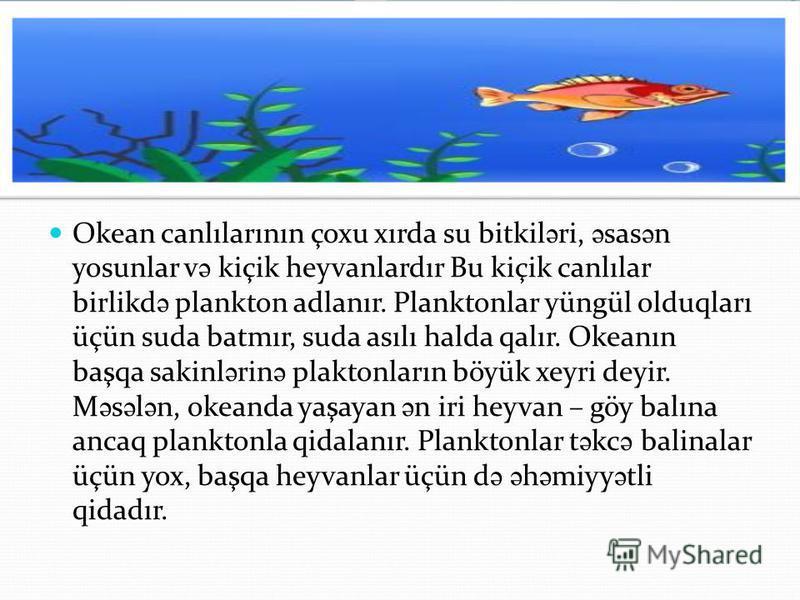 Okean canlılarının çoxu xırda su bitkil ə ri, ə sas ə n yosunlar v ə kiçik heyvanlardır Bu kiçik canlılar birlikd ə plankton adlanır. Planktonlar yüngül olduqları üçün suda batmır, suda asılı halda qalır. Okeanın başqa sakinl ə rin ə plaktonların böy