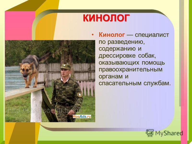 КИНОЛОГ Кинолог специалист по разведению, содержанию и дрессировке собак, оказывающих помощь правоохранительным органам и спасательным службам.