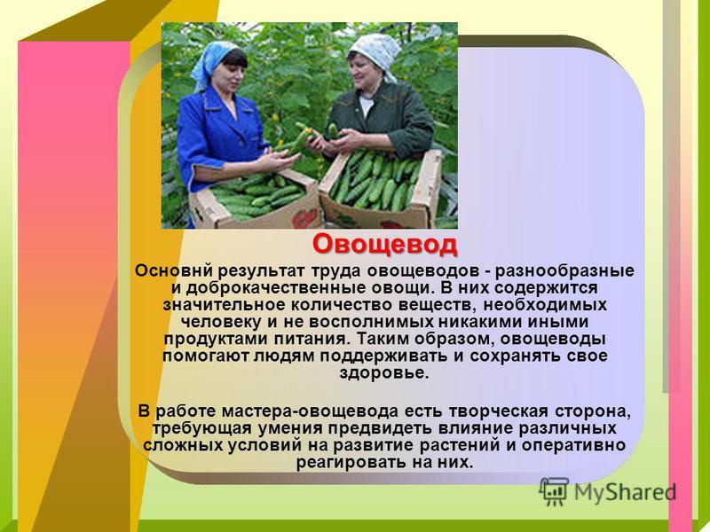 Овощевод Основнй результат труда овощеводов - разнообразные и доброкачественные овощи. В них содержится значительное количество веществ, необходимых человеку и не восполнимых никакими иными продуктами питания. Таким образом, овощеводы помогают людям