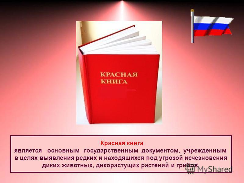 Красная книга является основным государственным документом, учрежденным в целях выявления редких и находящихся под угрозой исчезновения диких животных, дикорастущих растений и грибов.