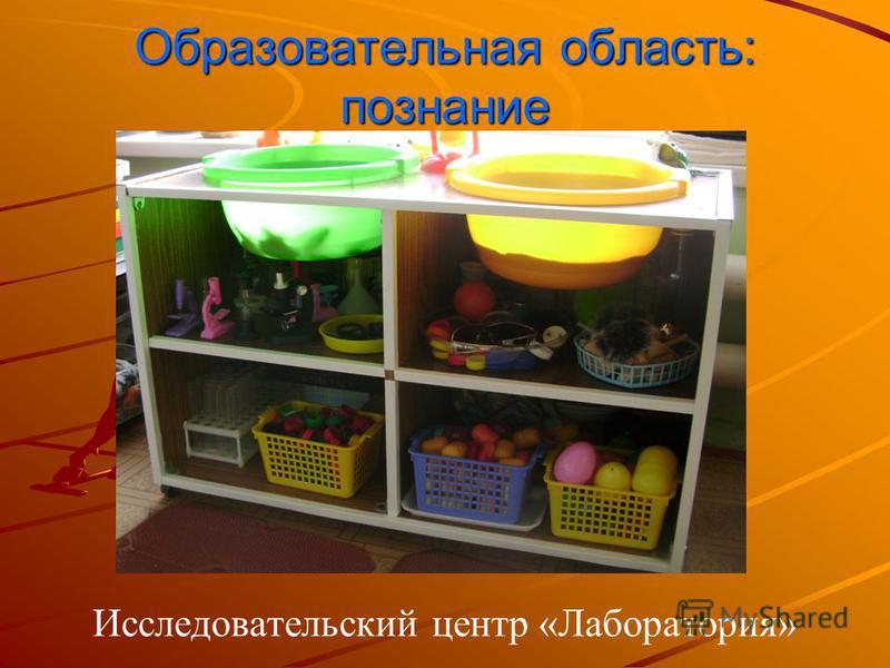 Образовательная область: познание Исследовательский центр «Лаборатория»
