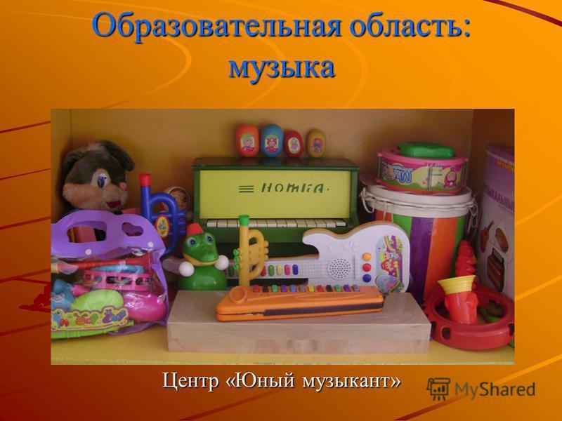 Образовательная область: музыка Центр «Юный музыкант»