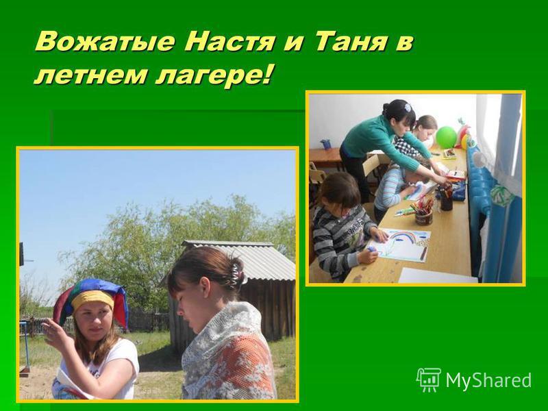 Вожатые Настя и Таня в летнем лагере!