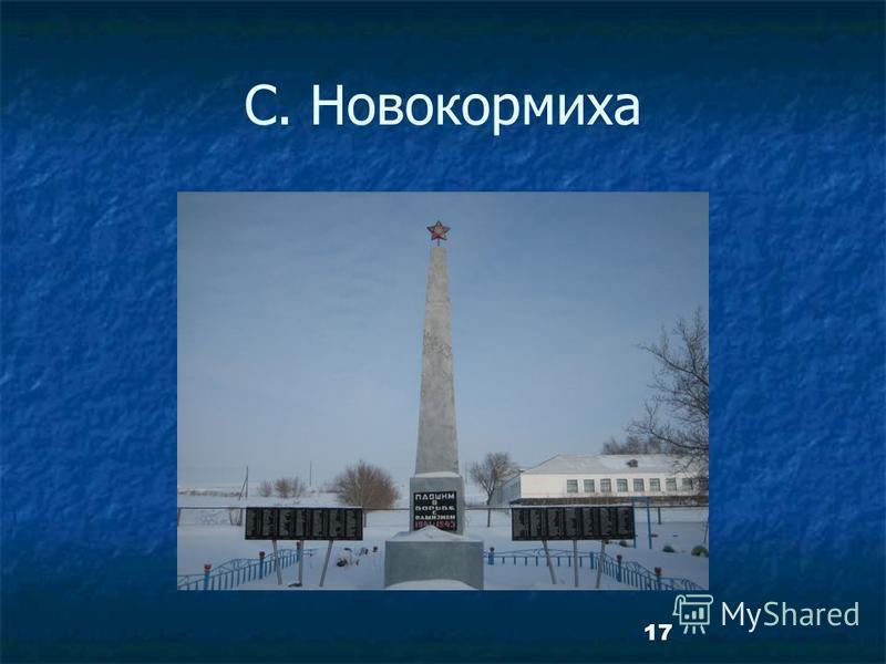 17 С. Новокормиха