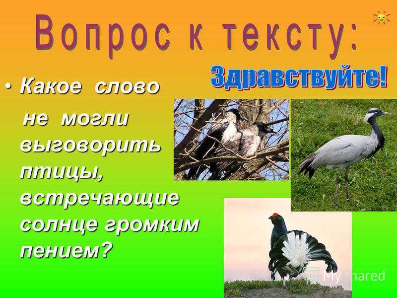 Какое слово Какое слово не могли выговорить птицы, встречающие солнце громким пением? не могли выговорить птицы, встречающие солнце громким пением?