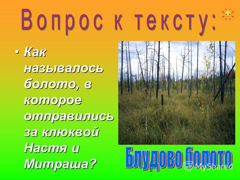 Как называлось болото, в которое отправились за клюквой Настя и Митраша?Как называлось болото, в которое отправились за клюквой Настя и Митраша?
