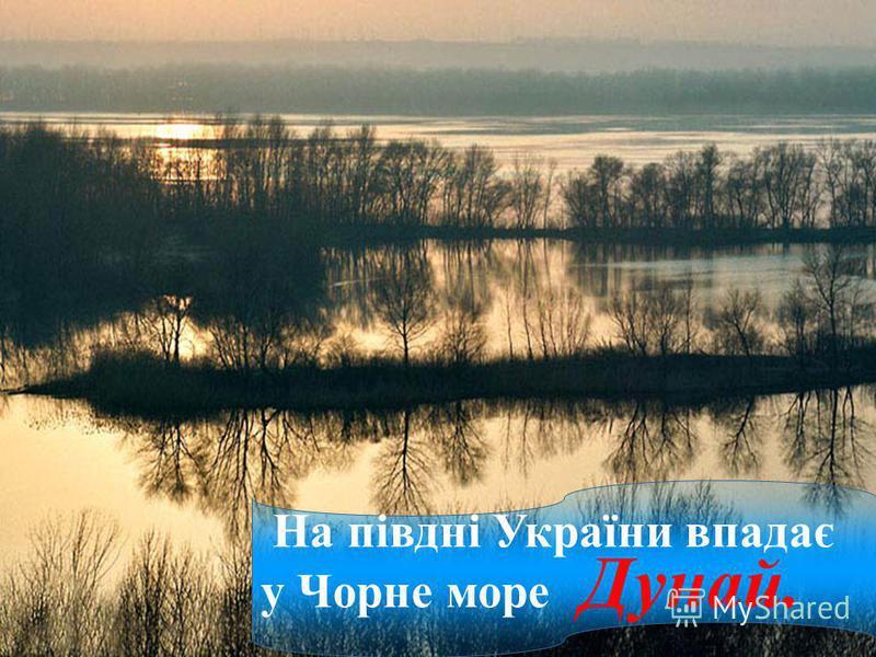 На півдні України впадає у Чорне море Дунай.