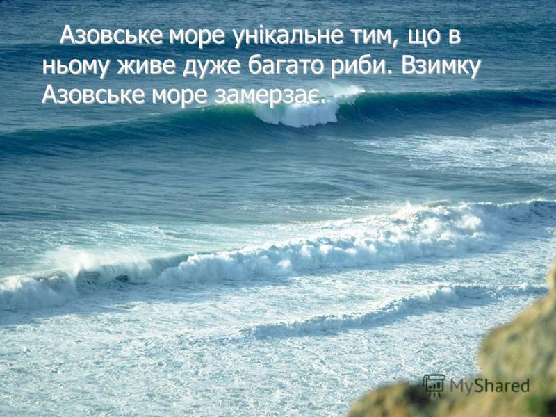 Азовське море унікальне тим, що в ньому живе дуже багато риби. Взимку Азовське море замерзає. Азовське море унікальне тим, що в ньому живе дуже багато риби. Взимку Азовське море замерзає.