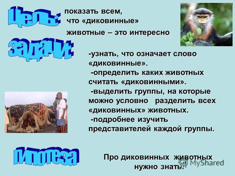 показать всем, что «диковинные» что «диковинные» животные – это интересно животные – это интересно -узнать, что означает слово «диковинные». -определить каких животных считать «диковинными». -определить каких животных считать «диковинными». -выделить