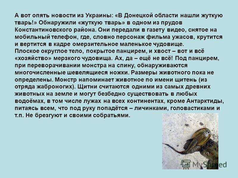 А вот опять новости из Украины: «В Донецкой области нашли жуткую тварь!» Обнаружили «жуткую тварь» в одном из прудов Константиновского района. Они передали в газету видео, снятое на мобильный телефон, где, словно персонаж фильма ужасов, крутится и ве