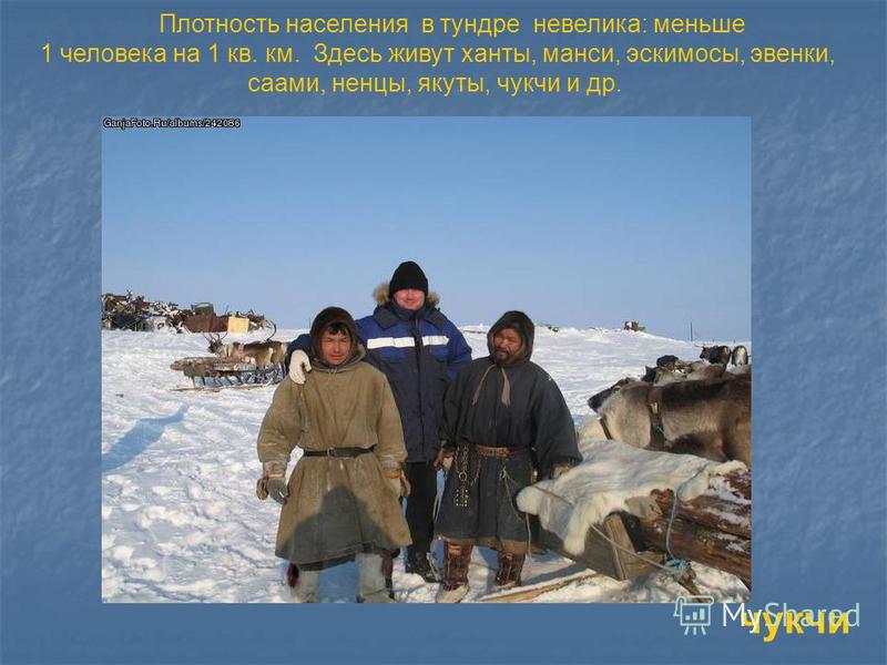 Плотность населения в тундре невелика: меньше 1 человека на 1 кв. км. Здесь живут ханты, манси, эскимосы, эвенки, саами, ненцы, якуты, чукчи и др. чукчи
