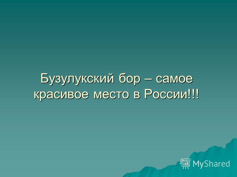 Бузулукский бор – самое красивое место в России!!!