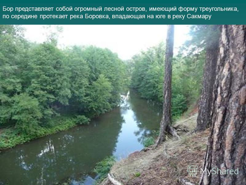 Бор представляет собой огромный лесной остров, имеющий форму треугольника, по середине протекает река Боровка, впадающая на юге в реку Сакмару