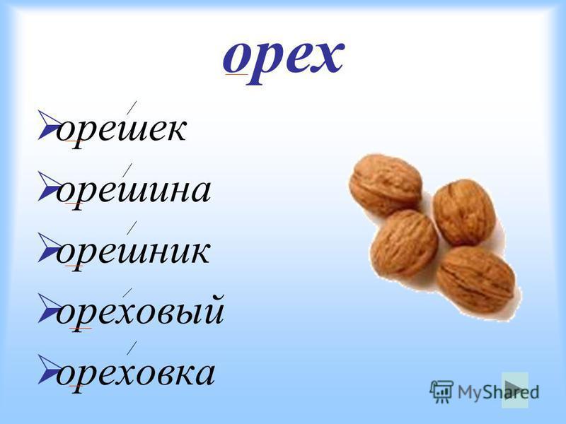 орех орешек орешина орешник ореховый ореховка