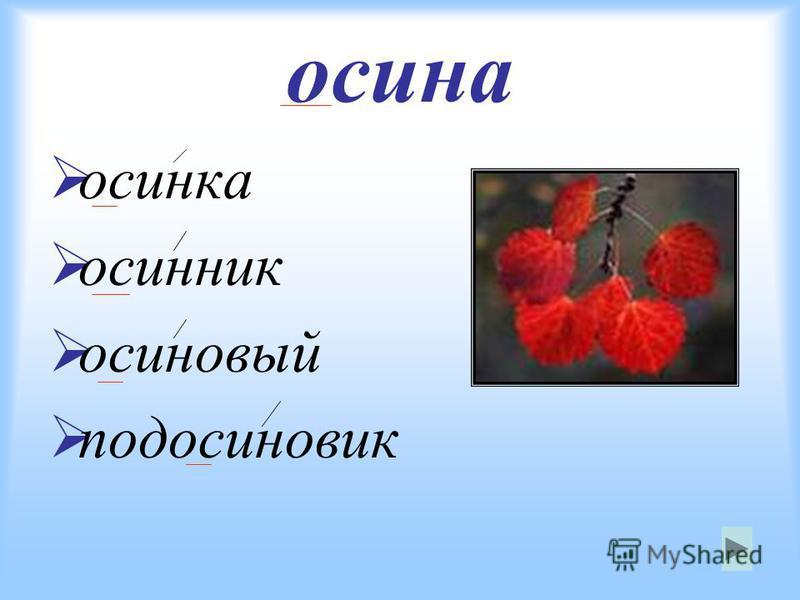 осина осинка осинник осиновый подосиновик