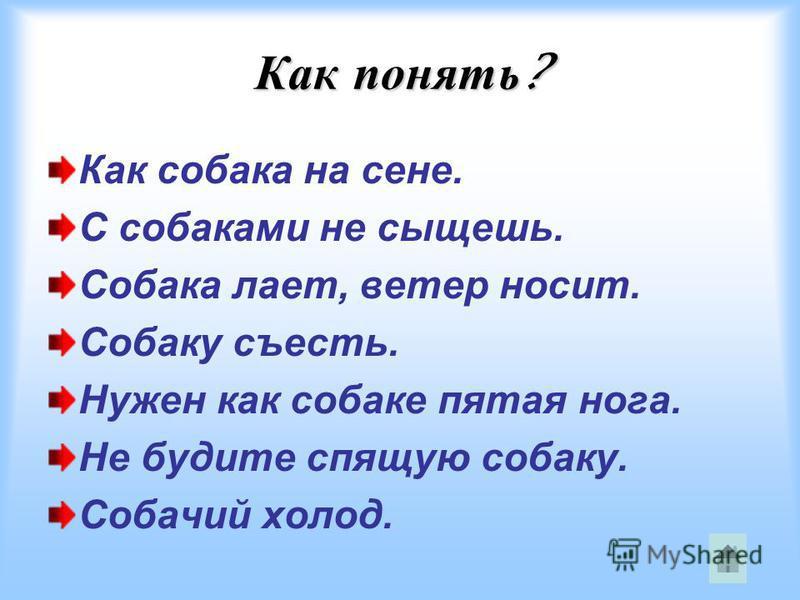 Как понять ? Как собака на сене. С собаками не сыщешь. Собака лает, ветер носит. Собаку съесть. Нужен как собаке пятая нога. Не будите спящую собаку. Собачий холод.