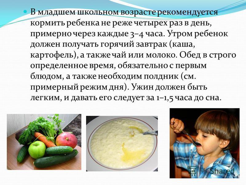 В младшем школьном возрасте рекомендуется кормить ребенка не реже четырех раз в день, примерно через каждые 3–4 часа. Утром ребенок должен получать горячий завтрак (каша, картофель), а также чай или молоко. Обед в строго определенное время, обязатель