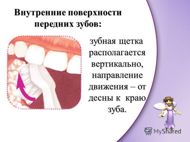 Внутренние поверхности передних зубов: зубная щетка располагается вертикально, направление движения – от десны к краю зуба.