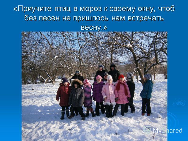 «Приучите птиц в мороз к своему окну, чтоб без песен не пришлось нам встречать весну.»
