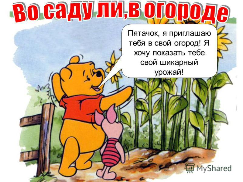 Пятачок, я приглашаю тебя в свой огород! Я хочу показать тебе свой шикарный урожай!