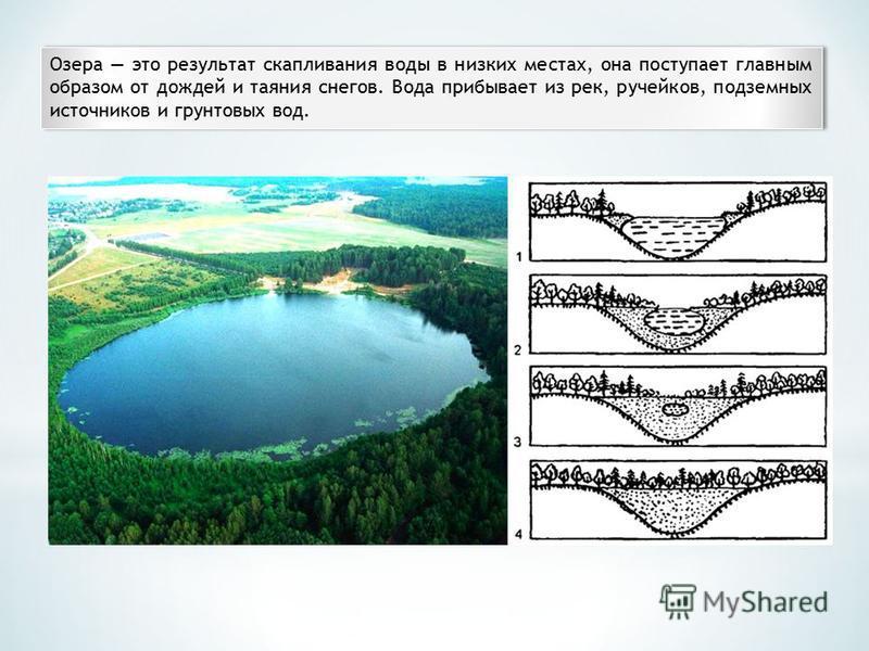 Озера это результат скапливания воды в низких местах, она поступает главным образом от дождей и таяния снегов. Вода прибывает из рек, ручейков, подземных источников и грунтовых вод.