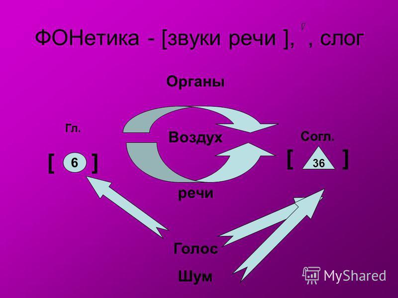 ФОНетика - [звуки речи ],, слог Органы Воздух речи Голос Шум Гл. [ ] Согл. [ ] 6 36