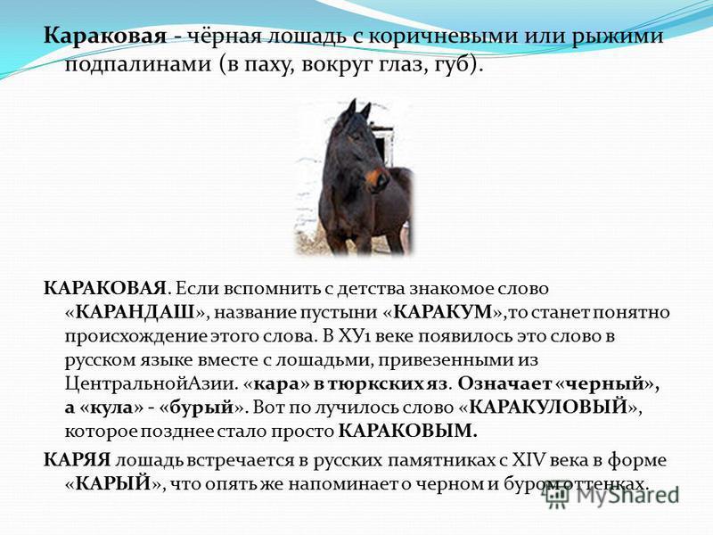 Караковая - чёрная лошадь с коричневыми или ружими подпалинами (в паху, вокруг глаз, губ). КАРАКОВАЯ. Если вспомнить с детства знакомое слово «КАРАНДАШ», название пустыни «КАРАКУМ»,то станет понятно происхождение этого слова. В ХУ1 веке появилось это