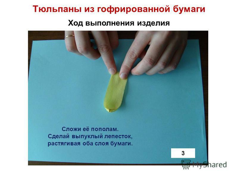 Тюльпаны из гофрированной бумаги Ход выполнения изделия 3 Сложи её пополам. Сделай выпуклый лепесток, растягивая оба слоя бумаги.