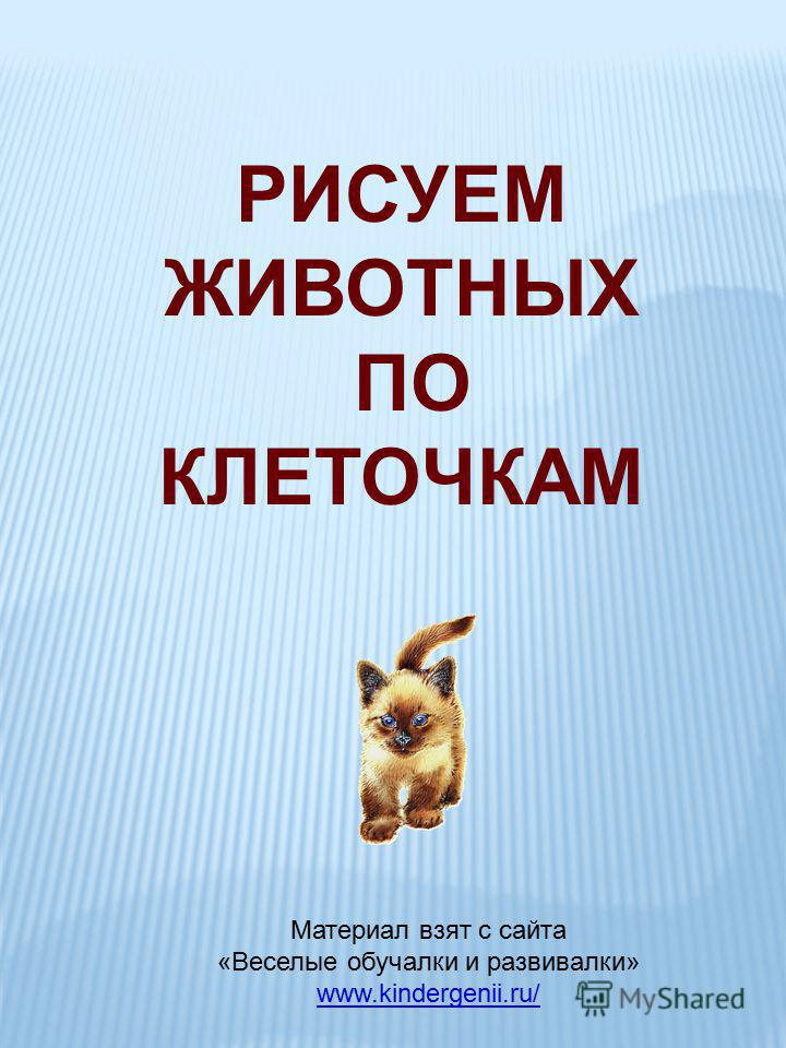 РИСУЕМ ЖИВОТНЫХ ПО КЛЕТОЧКАМ Материал взят с сайта «Веселые обучалки и развивалки» www.kindergenii.ru/