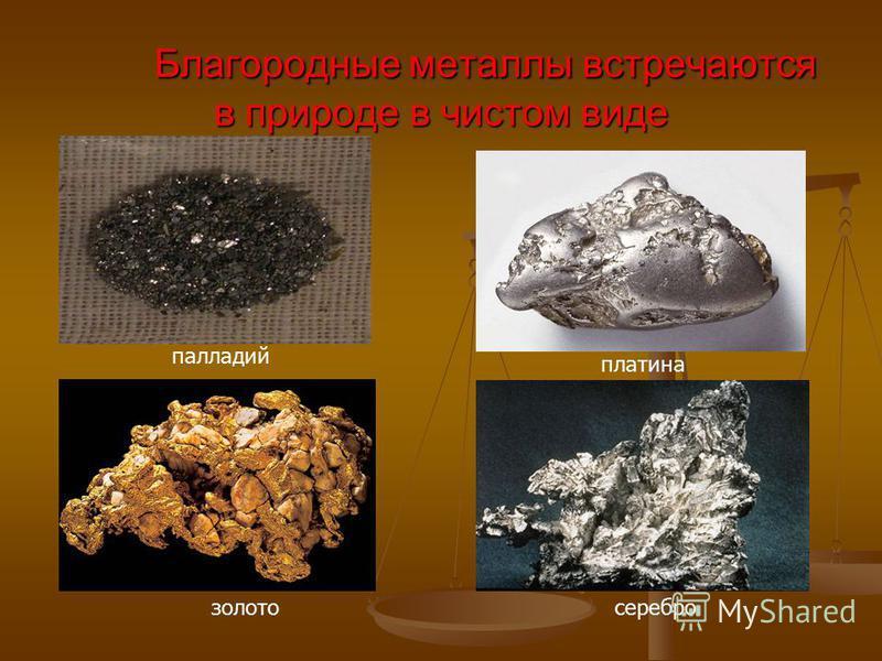 Благородные металлы встречаются в природе в чистом виде платина палладий золото серебро