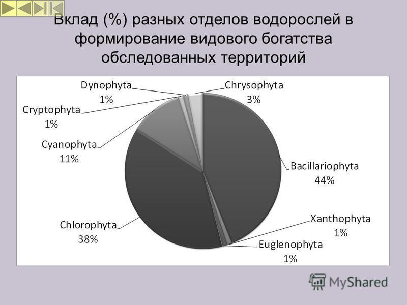 Вклад (%) разных отделов водорослей в формирование видового богатства обследованных территорий