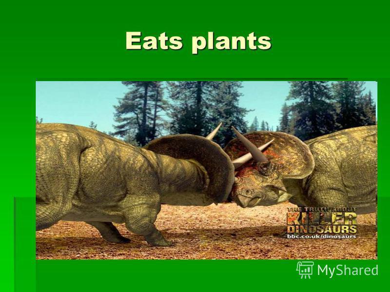 Eats plants