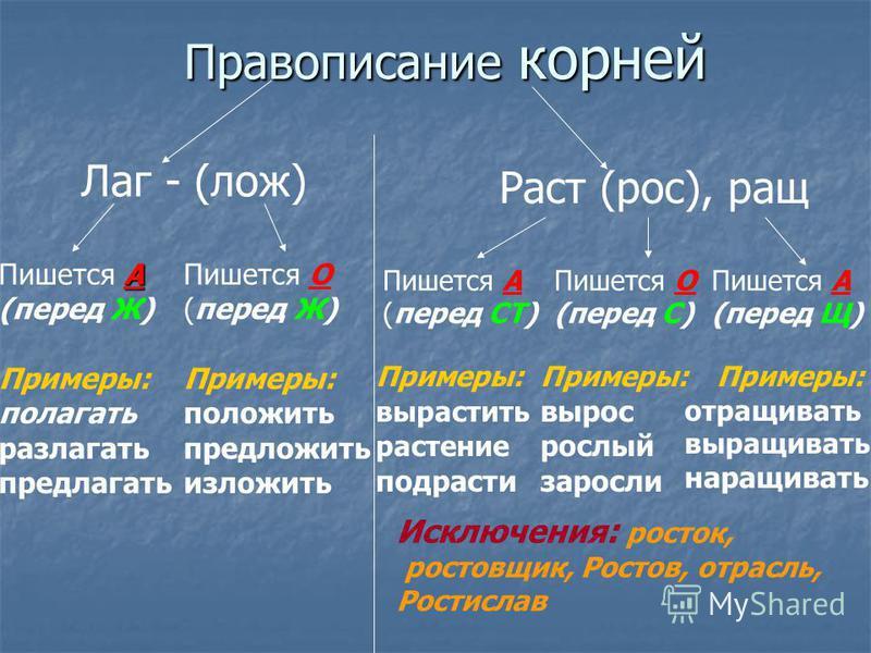 Правописание корней Лаг - (лож) Раст (рос), ращ А Пишется А (перед Ж) Примеры: полагать разлагать предлагать Пишется О (перед Ж) Примеры: положить предложить изложить Пишется А (перед СТ) Пишется О (перед С) Пишется А (перед Щ) Примеры: вырастить рас