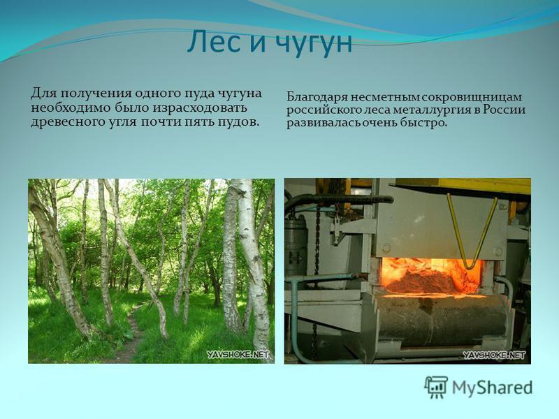 Лес и чугун Для получения одного пуда чугуна необходимо было израсходовать древесного угля почти пять пудов. Благодаря несметным сокровищницам российского леса металлургия в России развивалась очень быстро.