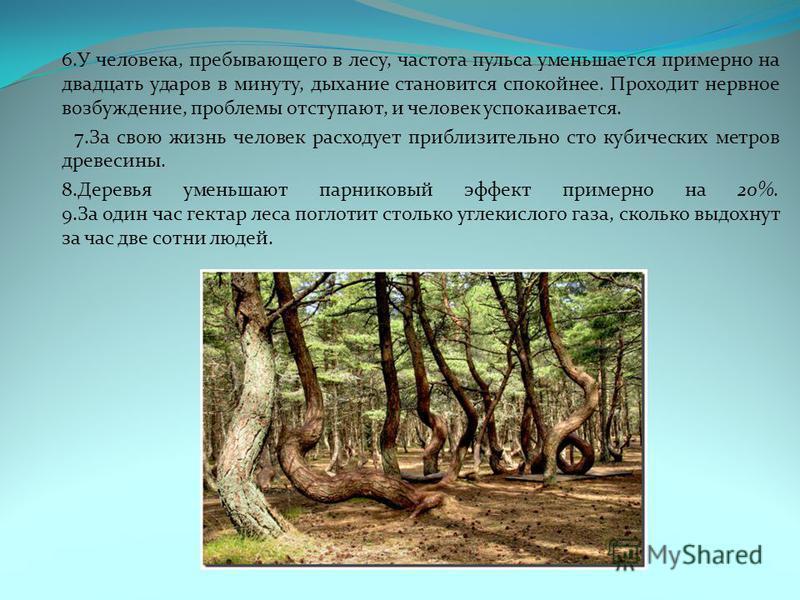 6. У человека, пребывающего в лесу, частота пульса уменьшается примерно на двадцать ударов в минуту, дыхание становится спокойнее. Проходит нервное возбуждение, проблемы отступают, и человек успокаивается. 7. За свою жизнь человек расходует приблизит