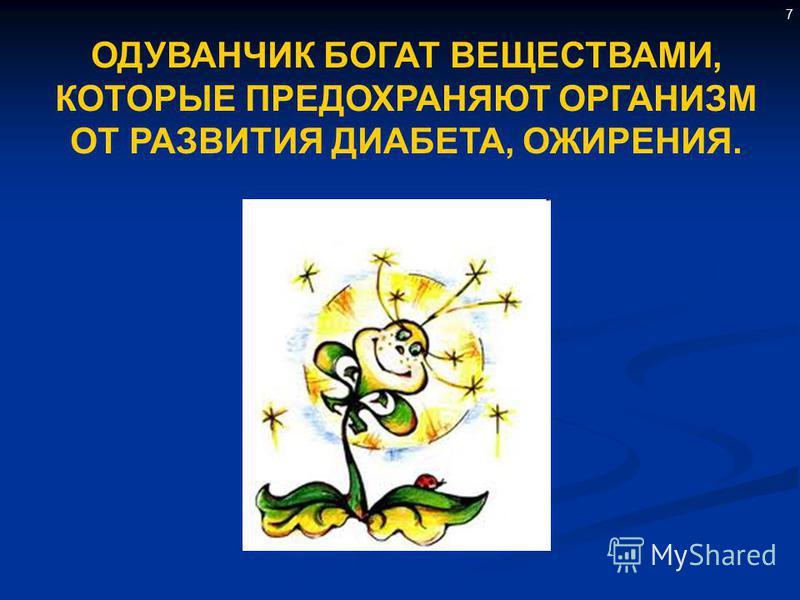 7 ОДУВАНЧИК БОГАТ ВЕЩЕСТВАМИ, КОТОРЫЕ ПРЕДОХРАНЯЮТ ОРГАНИЗМ ОТ РАЗВИТИЯ ДИАБЕТА, ОЖИРЕНИЯ.