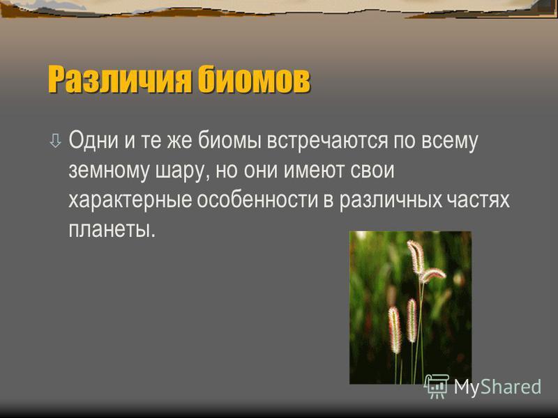 Различия биомов òОòОдни и те же биомы встречаются по всему земному шару, но они имеют свои характерные особенности в различных частях планеты.
