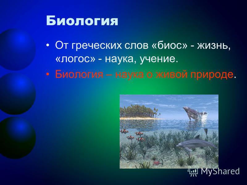 Биология От греческих слов «биос» - жизнь, «логос» - наука, учение. Биология – наука о живой природе.