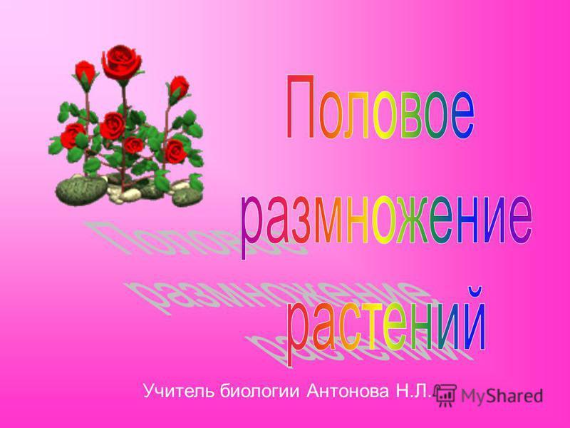 Учитель биологии Антонова Н.Л.
