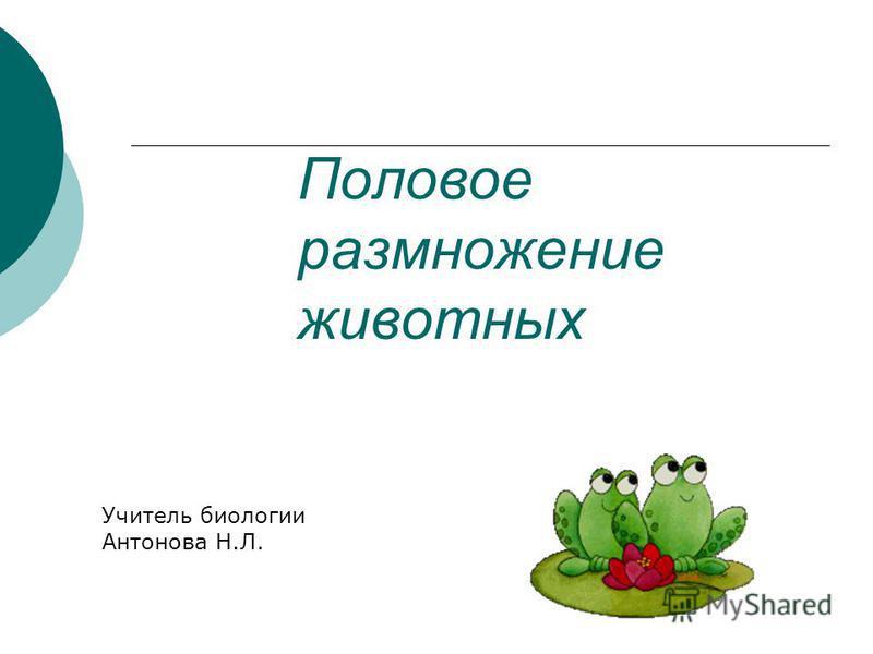 Половое размножение животных Учитель биологии Антонова Н.Л.