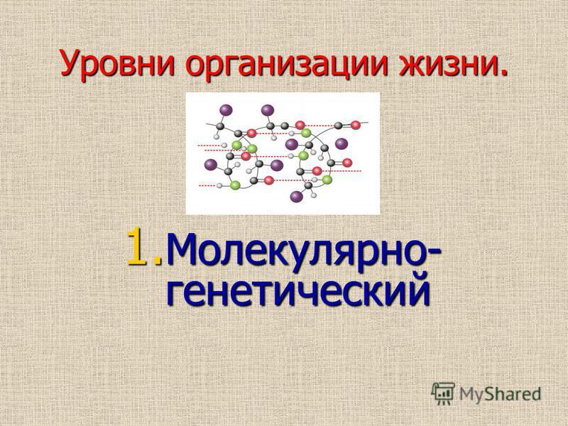Уровни организации жизни. 1. Молекулярно- генетический