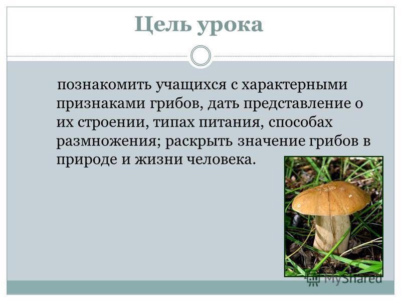 Цель урока познакомить учащихся с характерными признаками грибов, дать представление о их строении, типах питания, способах размножения; раскрыть значение грибов в природе и жизни человека.